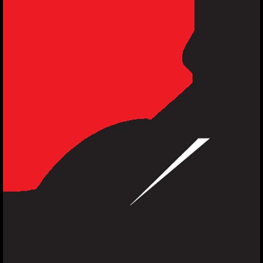 Logo CCPSA site icon